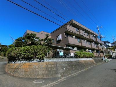 小田急線「生田」駅より徒歩圏内!最寄りバス停から徒歩1分の3階建てマンション!雨の日の通勤やお出かけもバス利用でスムーズです♪