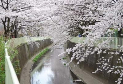 【周辺】美和プラザ富士見ヶ丘