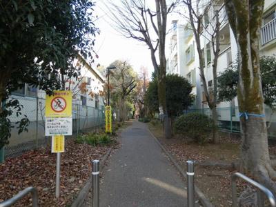 【四谷軒第5経堂シティコーポ】 周辺の様子