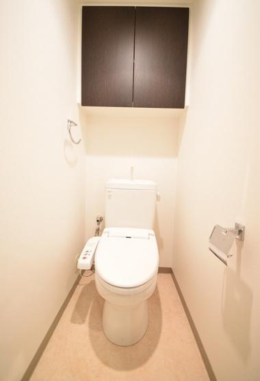 シティハウスけやき通り(2LDK) トイレ