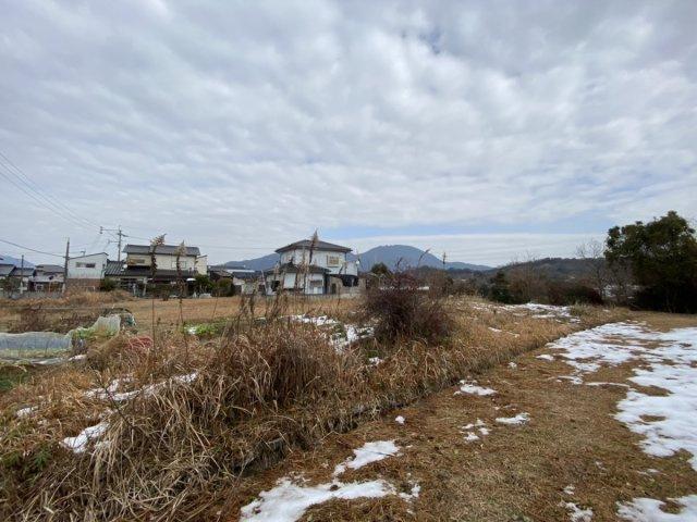 南側から隣地側写真