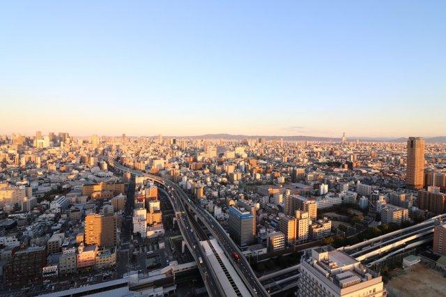 37階からの眺望