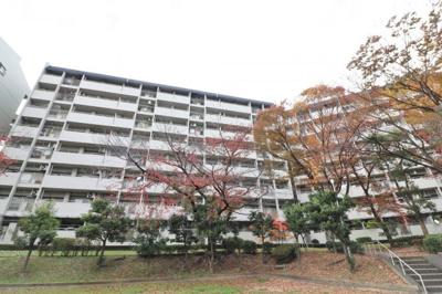 【現地写真】鉄筋コンクリート造の 91戸の大型マンション♪