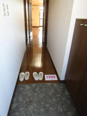 【玄関】スプリングデイハイツ