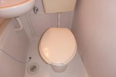 【トイレ】ブロードビーン