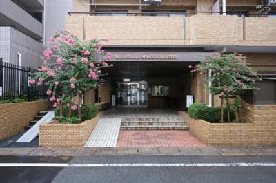 【エントランス】ライオンズマンション武蔵新城第2