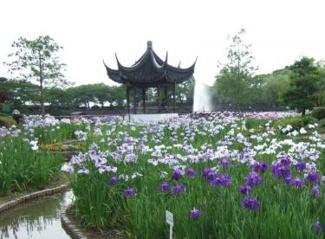 赤坂上池公園