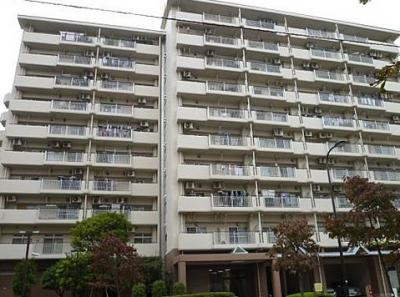 総戸数54戸、鉄骨鉄筋コンクリート造10階建マンションです。