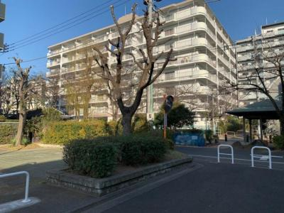 常磐線「亀有」駅と千代田線「北綾瀬」駅、2駅2沿線が徒歩圏内で利用できる立地。