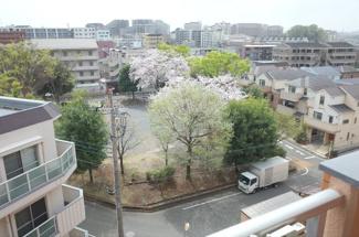 南側洋室6帖の南側前面の眺望です。前面が石田公園のため、とても伸びやかに抜けています。