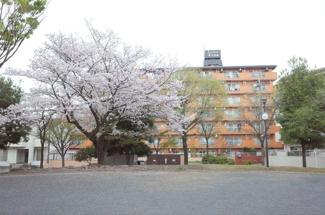 石田公園目の前。 開放感あふれるロケーションです。