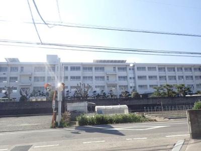 石井東小学校 707m