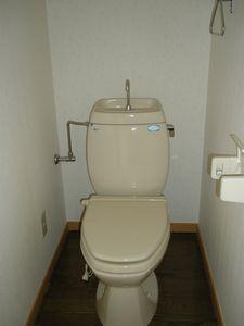 【トイレ】ドミール美原