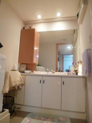 収納たっぷりな洗面室。毎朝の準備もゆったりとできます。