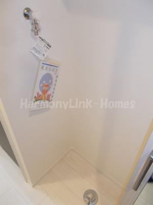 ルビーパレスの室内洗濯機置き場