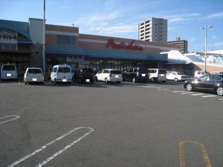 マルナカ土居田店 248m