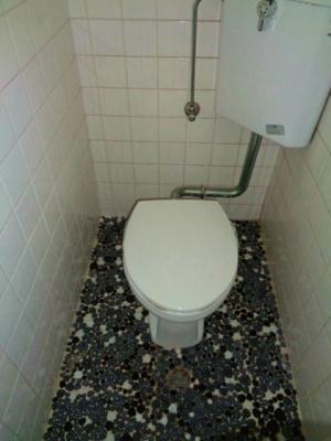【トイレ】針中野3戸建て貸家