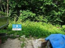 安佐南区長楽寺町 の画像