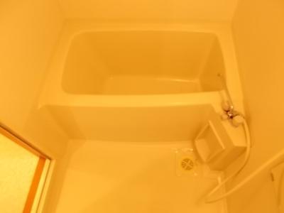 【浴室】オンディーヌ花の木