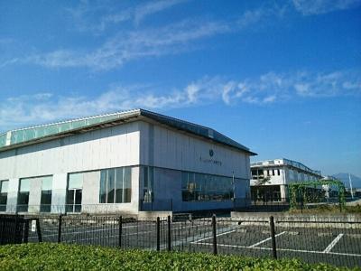 市立桜山小学校まで700m