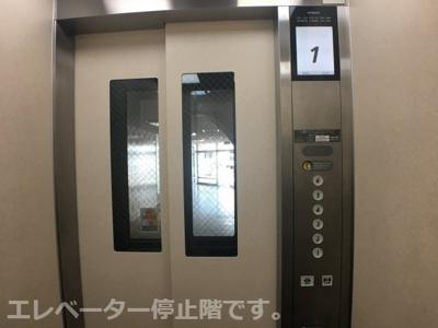 エレベーター停止階です。