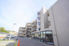 平塚市松風町 ベルグランデ湘南松風 2階の画像