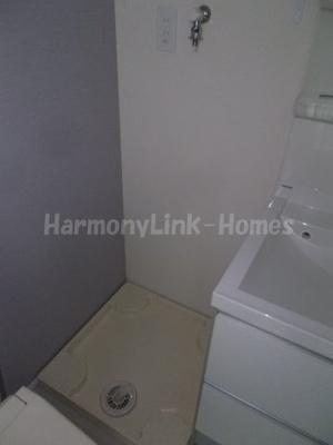 レジナガーデンの室内洗濯機置き場(別部屋参考写真)