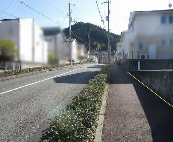 【前面道路含む現地写真】池