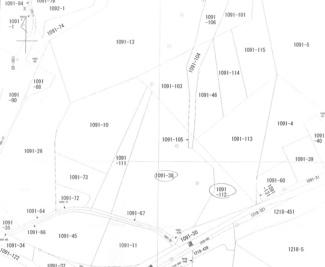【土地図】石垣市字川平売土地5940㎡
