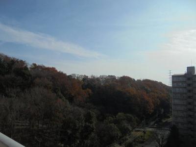 ≪南バルコニーからの眺望≫ 緑豊かな開放感のある眺望です。