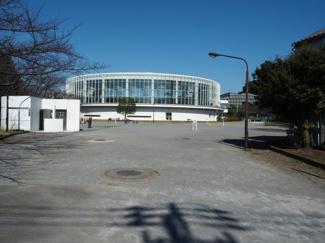 新平井橋公園 現地から約100m