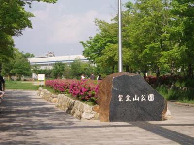 隣接している紫金山公園。