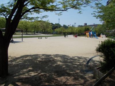 紫金山公園内には広々とした広場があります。