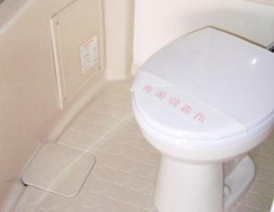 【トイレ】ジャイアンツハイツ