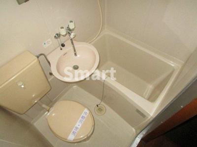 【浴室】ハイランドイントチノキ