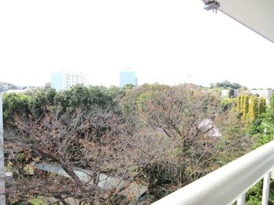 緑豊かな眺望