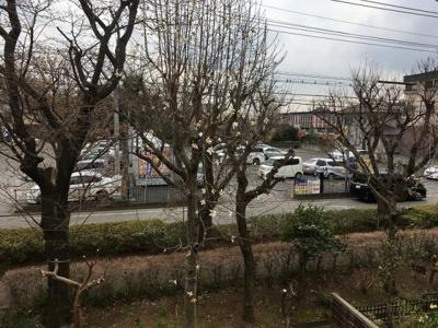 【展望】野火止団地11号棟