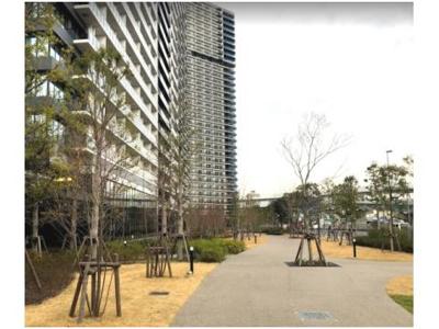 【外観】シティタワーズ東京ベイセントラルタワー 6階 2019年築