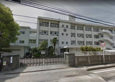 松山市立雄新中学校 556m