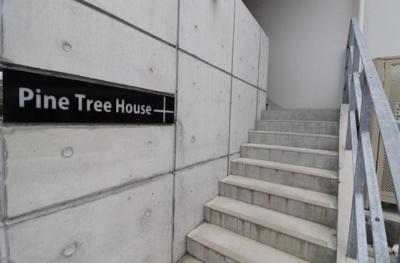 【エントランス】Pine Tree House