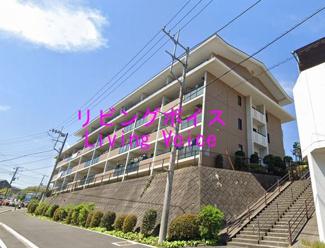 藤沢市渡内4丁目 ダイヤグランデ藤沢 中古マンション