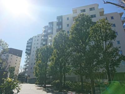 京王線「芦花公園」駅も徒歩約6分です。