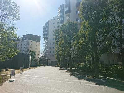 緑豊かな広大な敷地の大規模マンションです。