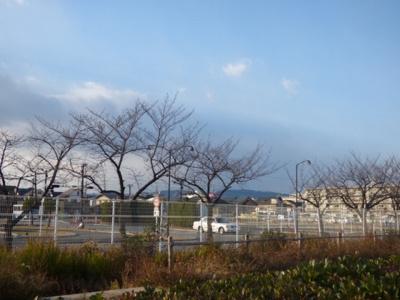【周辺】メゾン並木