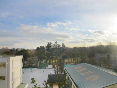 バルコニーからは都立赤塚公園が望める眺望良好なお部屋です。