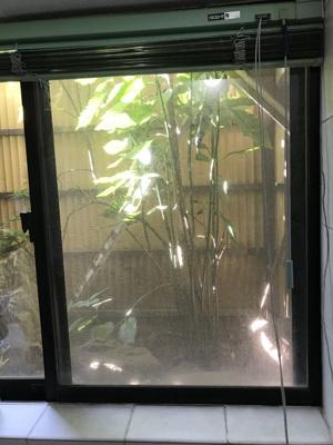 バスルームから見える坪庭