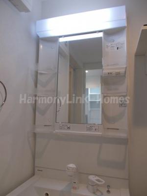 ハーモニーテラス立石の独立洗面台、小物を置くことができて便利です(朝シャンできます)☆