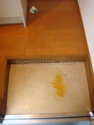 ライフピアロベリアの玄関(別部屋参考写真)☆