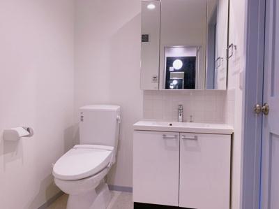 ゆったりとスペースのある洗面所 【COCO SMILE ココスマイル】同型タイプ