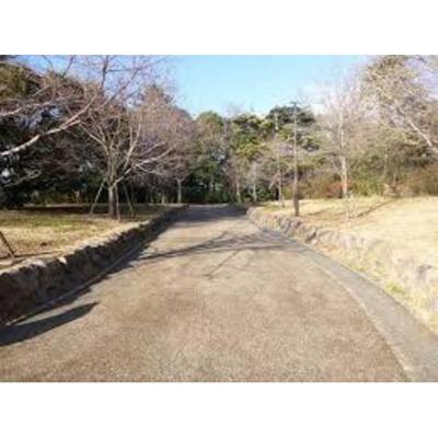 公園「徳丸タウンブリッジ緑地まで437m」
